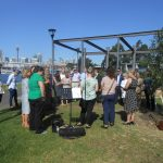 Memorial Service and tree planting, Sydney Australia; Sydney funeral celebrant Joy Allen; memorial services; funeral alternatives;