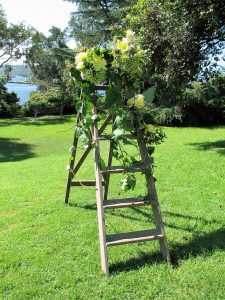 wedding ceremony decorations; park wedding; sydney celebrant; marriage celebrant; Sydney wedding park; joyfuloccasions