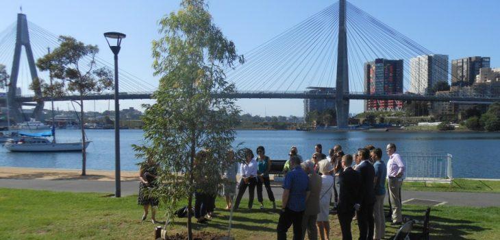 memorial; tree planting; funeral service; Sydney funeral celebrant;